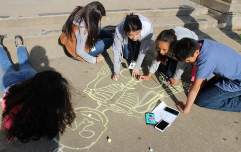 Principles of Health Science classes draw chalk skeletons