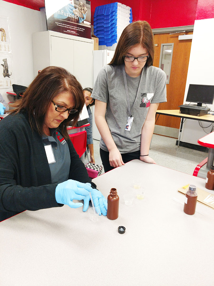 E4 member works with Sophomore Hailey Barber in health science