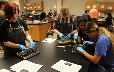 Juniors Hailey Brown, Jackson Traywick, Vanessa Zarazua and Destiny Mendez work on their cow eye samples.