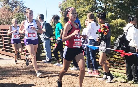 Cristina Rosas places at State Cross Country meet