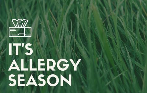 Preventing seasonal allergies